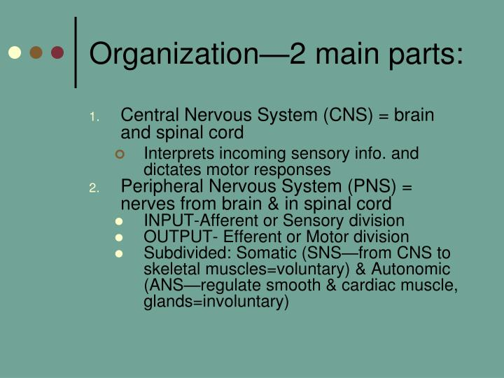 Organization—2 main parts: