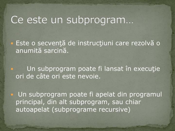 Ce este un subprogram