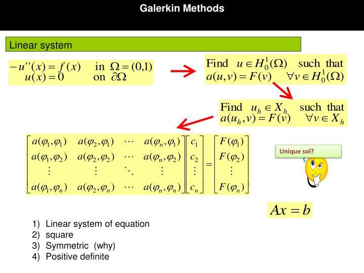 Galerkin Methods