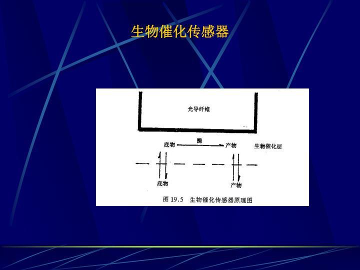 生物催化传感器