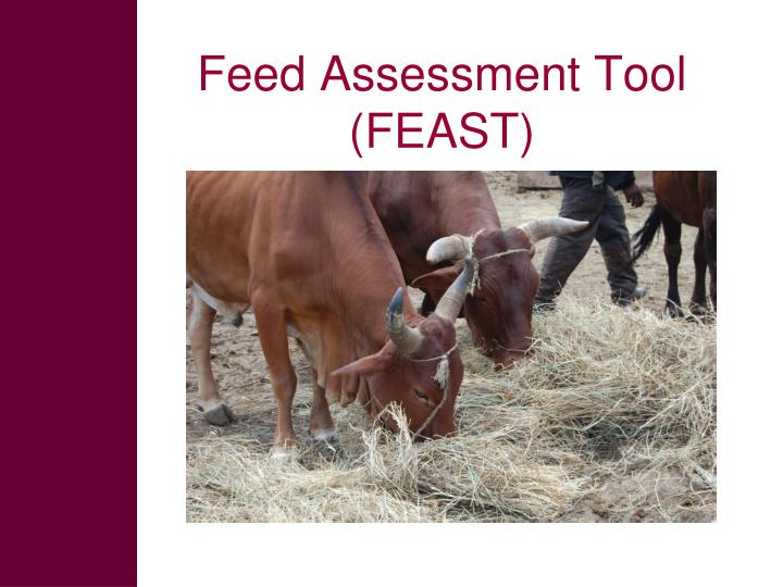 Feed Assessment Tool (FEAST)