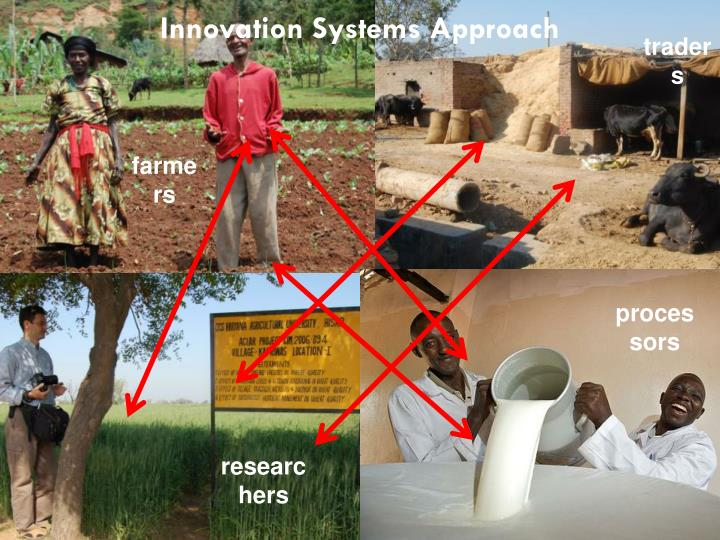 Innovation Systems Approach