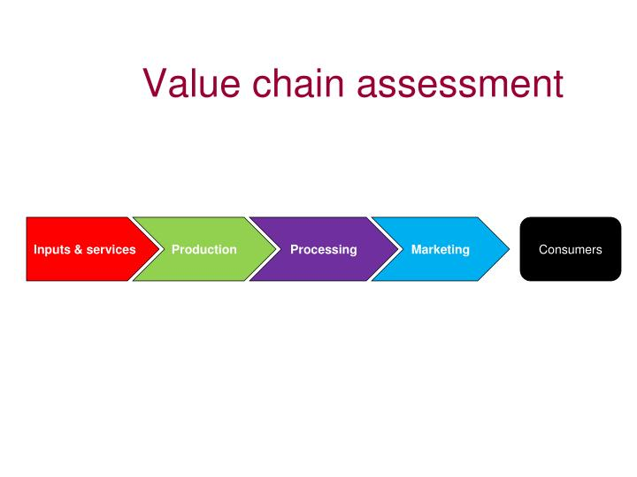 Value chain assessment