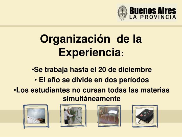 Organización  de la Experiencia