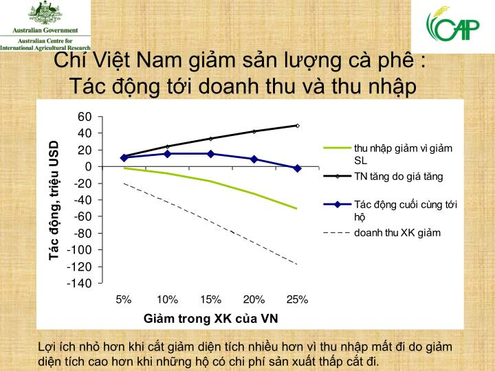 Chỉ Việt Nam giảm sản lượng cà phê :