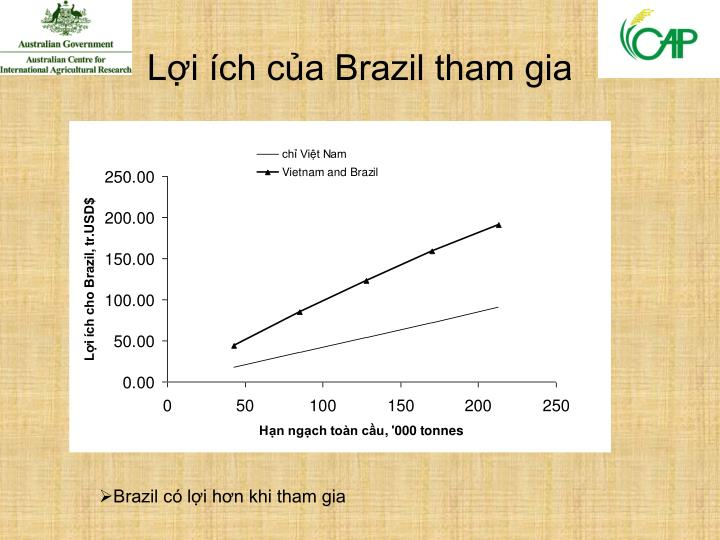 Lợi ích của Brazil tham gia