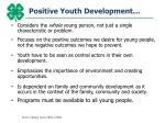 positive youth development