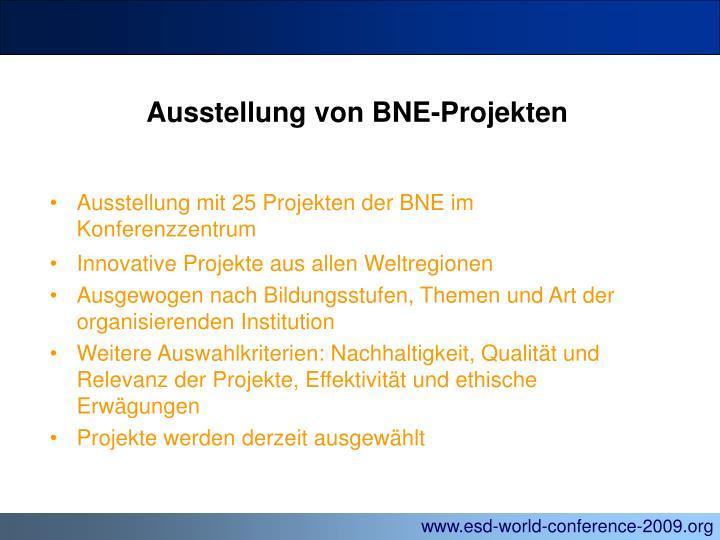 Ausstellung von BNE-Projekten