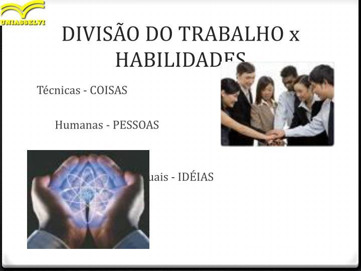 DIVISÃO DO TRABALHO x HABILIDADES