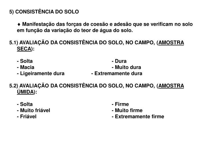 5) CONSISTÊNCIA DO SOLO
