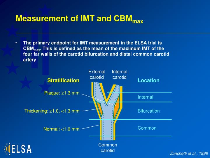 Measurement of IMT and CBM