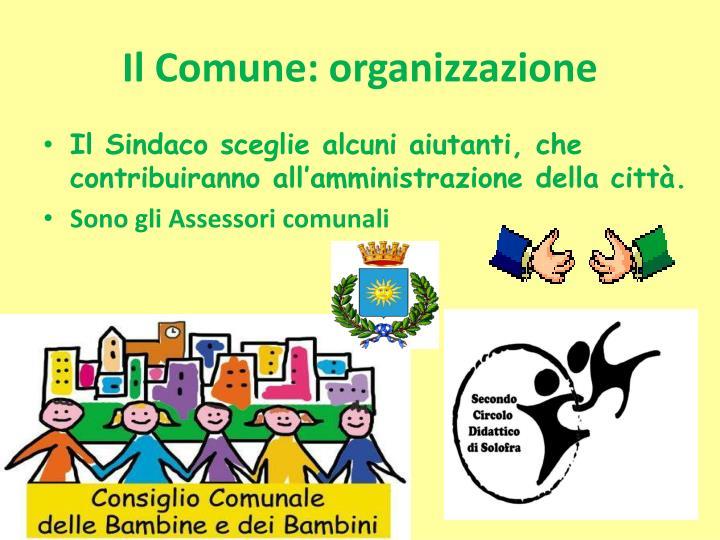 Il Comune: organizzazione