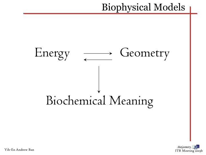 Biophysical Models