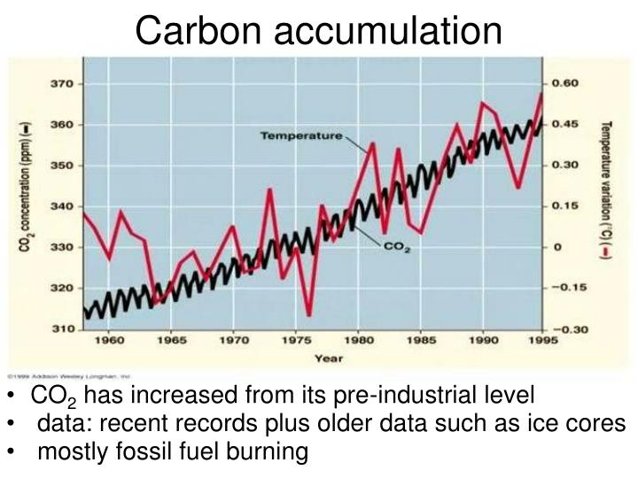 Carbon accumulation