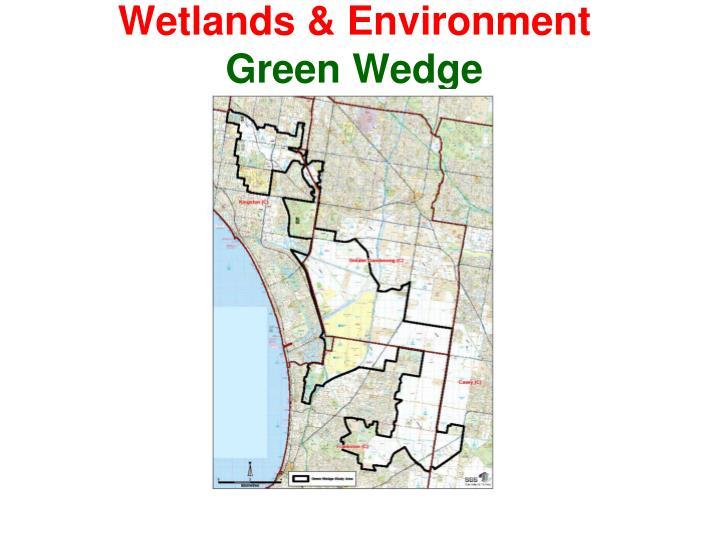 Wetlands & Environment
