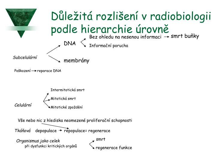 Důležitá rozlišení v radiobiologii podle hierarchie úrovně