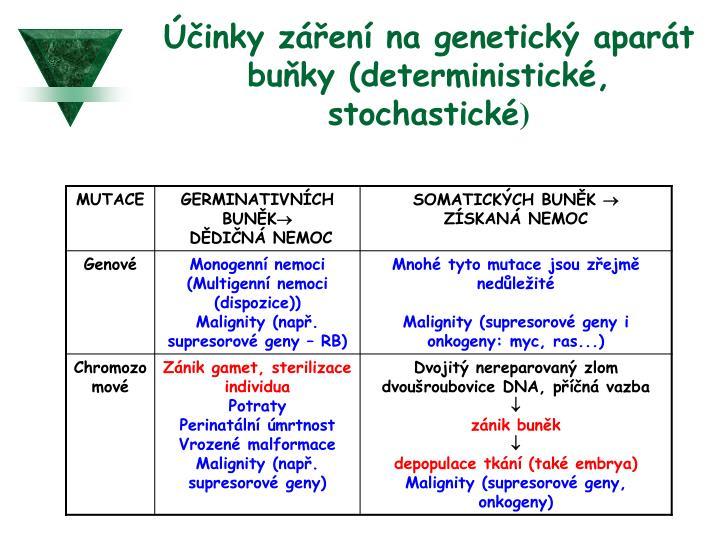 Účinky záření na genetický aparát buňky (deterministické, stochastické