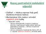 rozvoj postradia n molekul rn odpov di