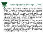 tumor supresorov protein p53 tp53