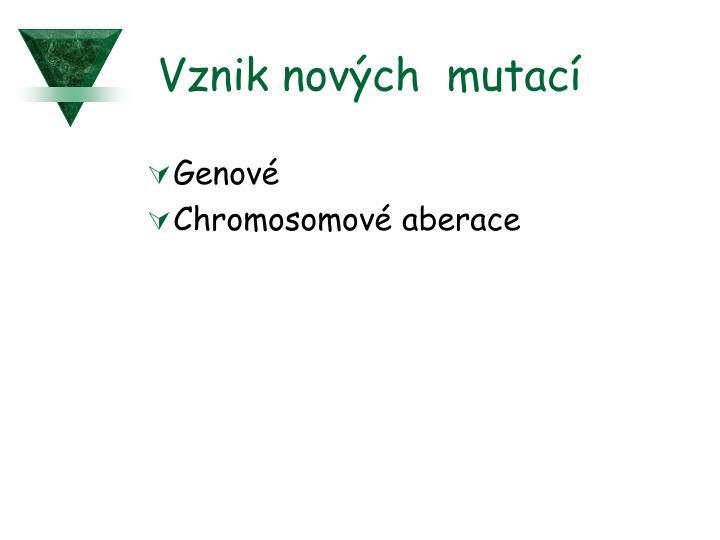 Vznik nových  mutací