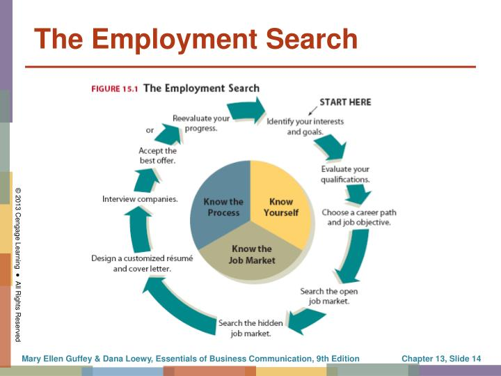 The Employment Search