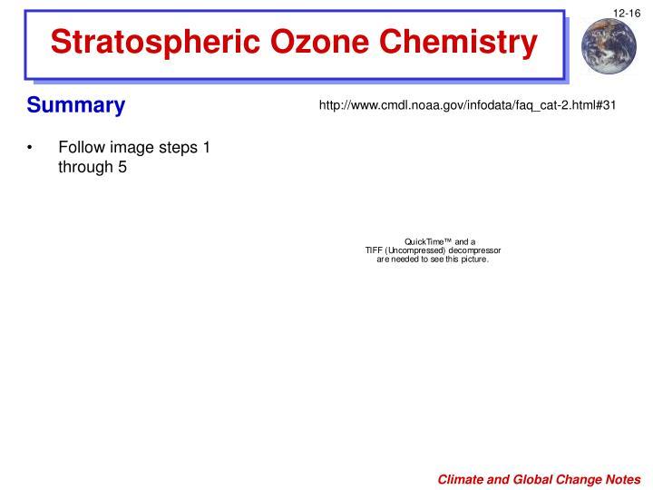 Stratospheric Ozone Chemistry