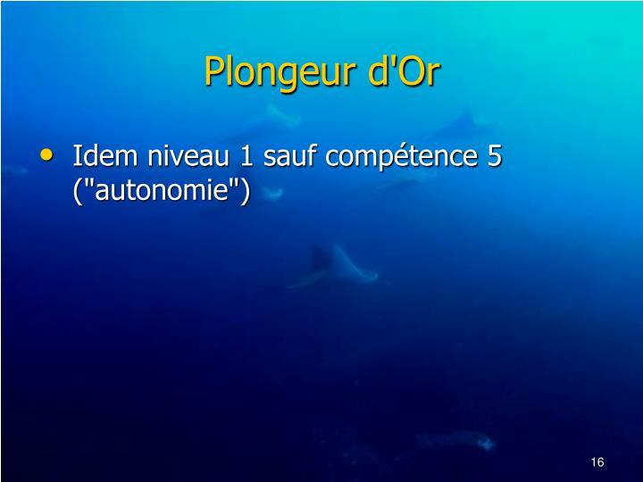 Plongeur d'Or