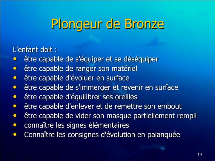 Plongeur de Bronze
