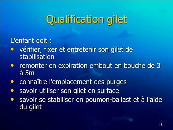 Qualification gilet