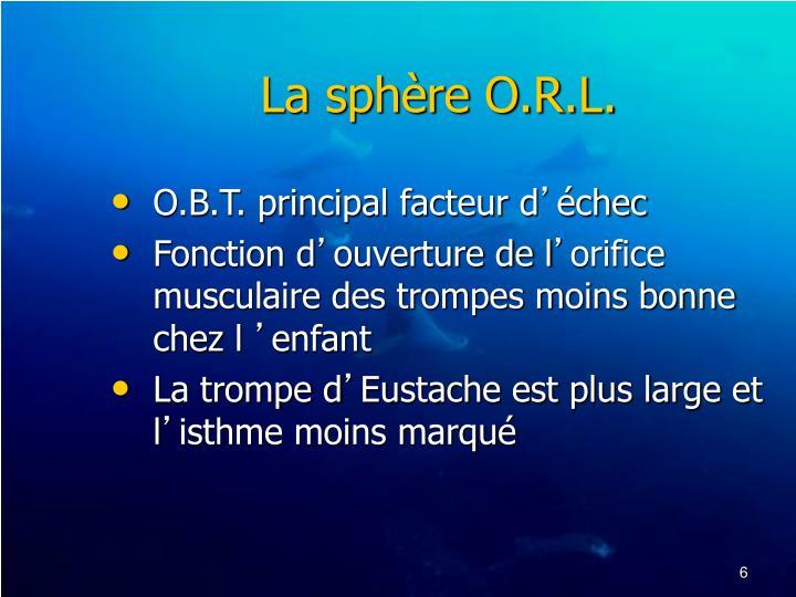 La sphère O.R.L.
