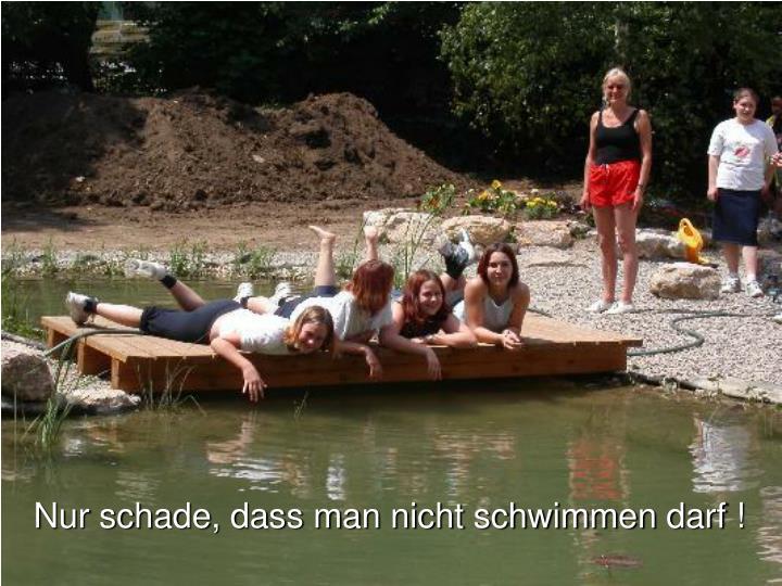 Nur schade, dass man nicht schwimmen darf !