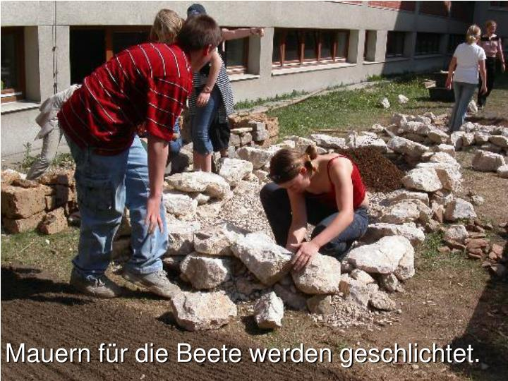 Mauern für die Beete werden geschlichtet.