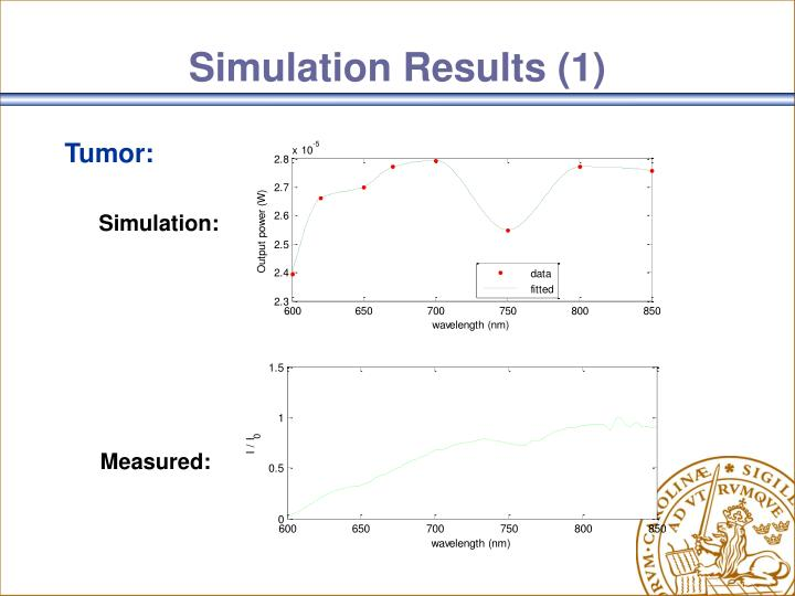 Simulation Results (1)