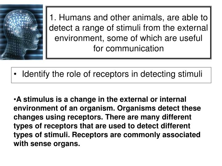 1. Humans and other animals, are able to detect a range of stimuli from the external environment, some of which are useful for communication