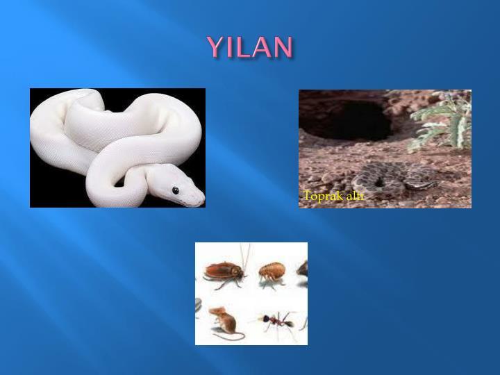YILAN