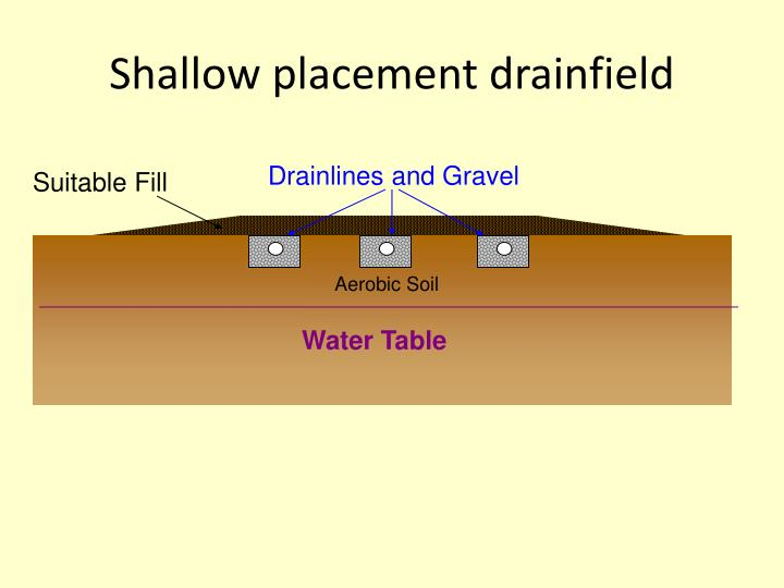 Shallow placement drainfield