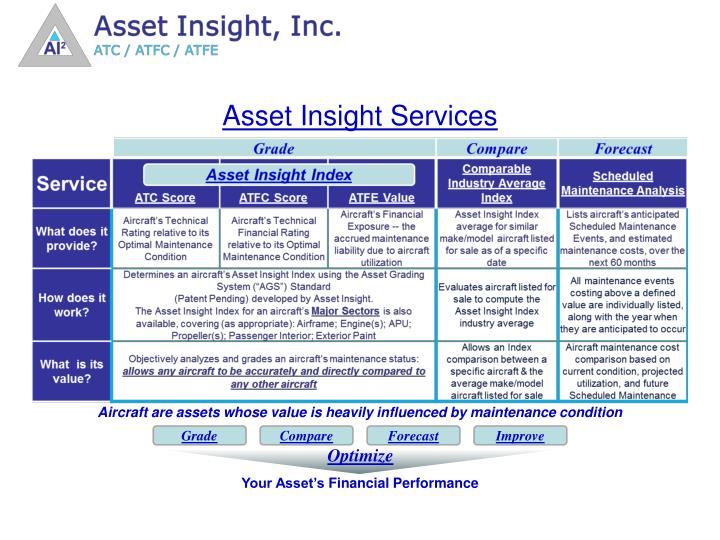 Asset Insight Services