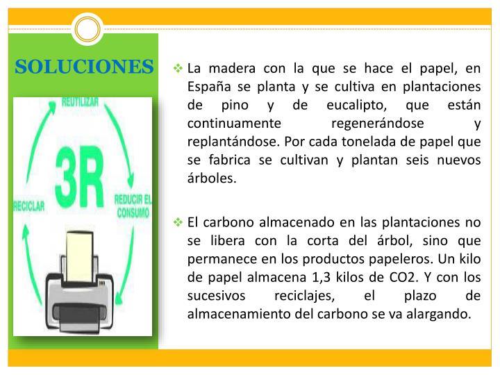 La madera con la que se hace el papel, en España se planta y se cultiva en plantaciones de pino y de eucalipto, que están continuamente regenerándose y replantándose. Por cada tonelada de papel que se fabrica se cultivan y plantan seis nuevos árboles.