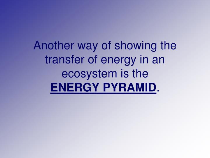 Another way of showing the transfer of energy in an ecosystem is the