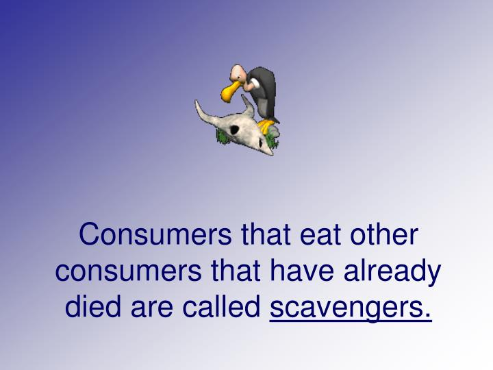 Consumers that eat other consumers that have already died are called