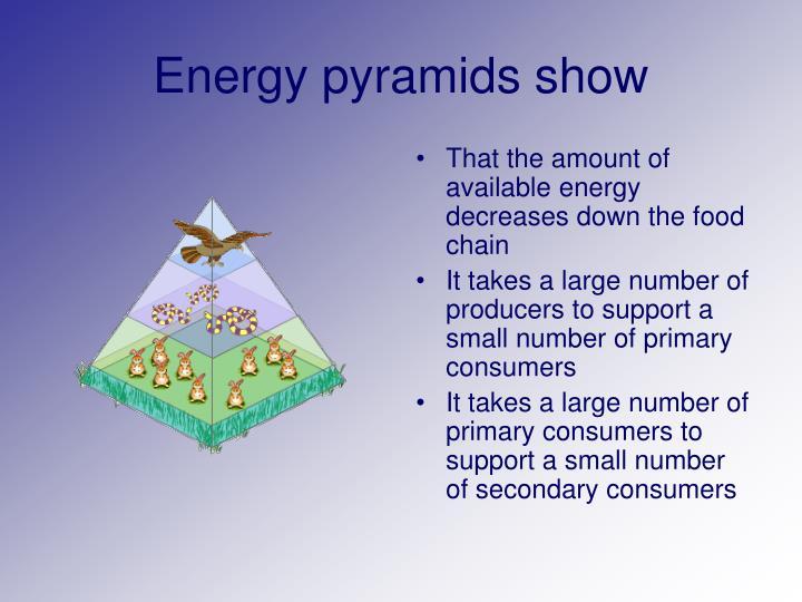 Energy pyramids show