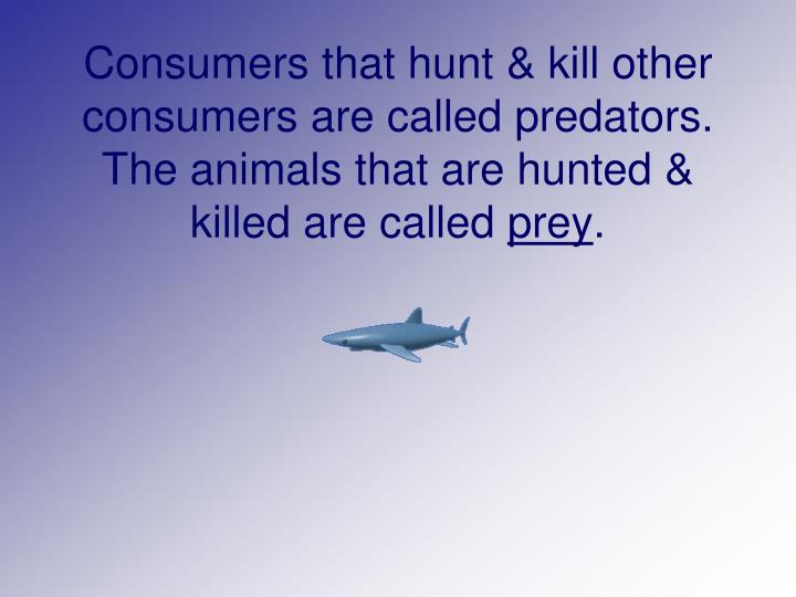Consumers that hunt & kill other consumers are called predators.