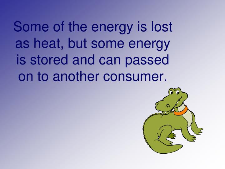 Some of the energy is lost as heat, but some energy is stored and can passed on to another consumer.