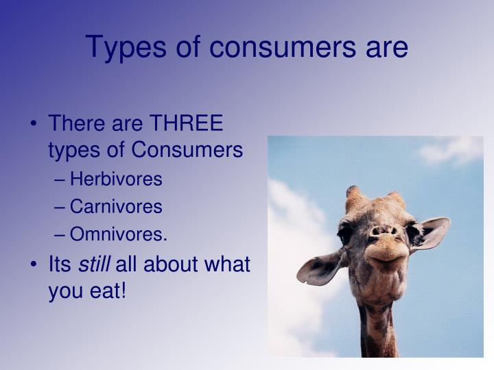 Types of consumers are