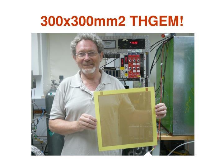300x300mm2 THGEM!