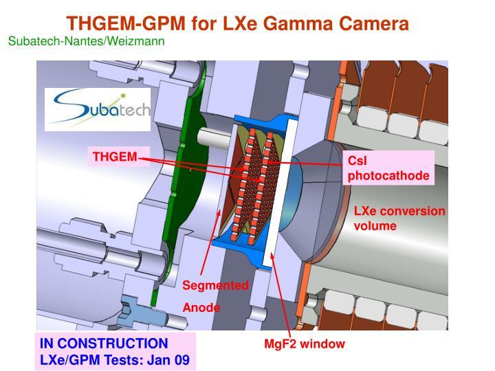 THGEM-GPM for LXe Gamma Camera