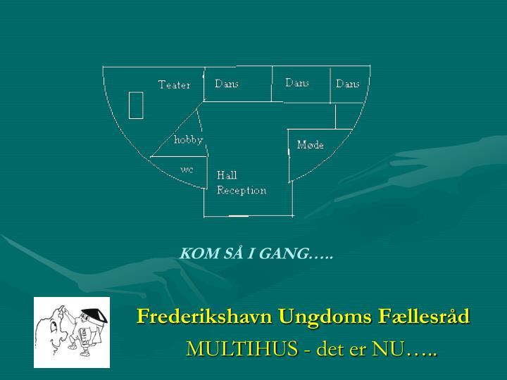 Frederikshavn Ungdoms Fællesråd