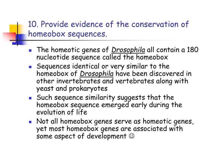 10. Provide evidence of the conservation of homeobox sequences.