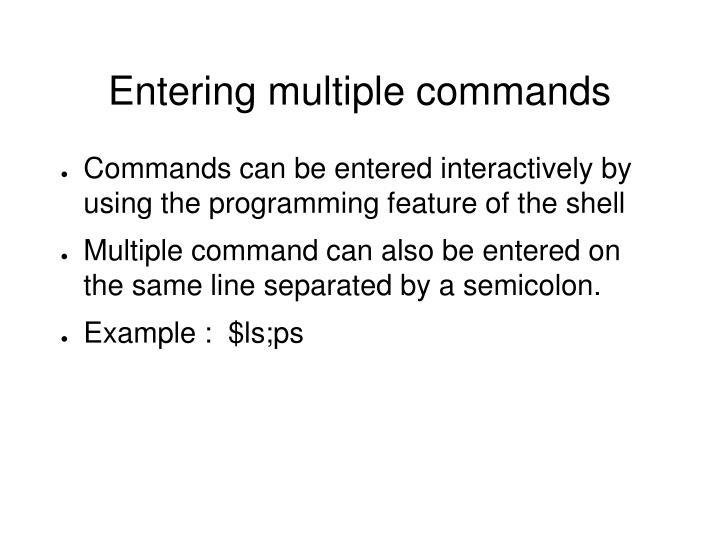 Entering multiple commands