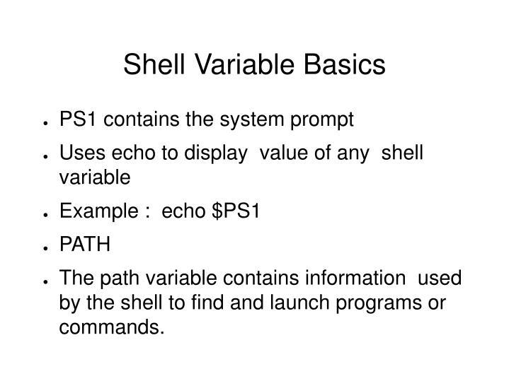 Shell Variable Basics